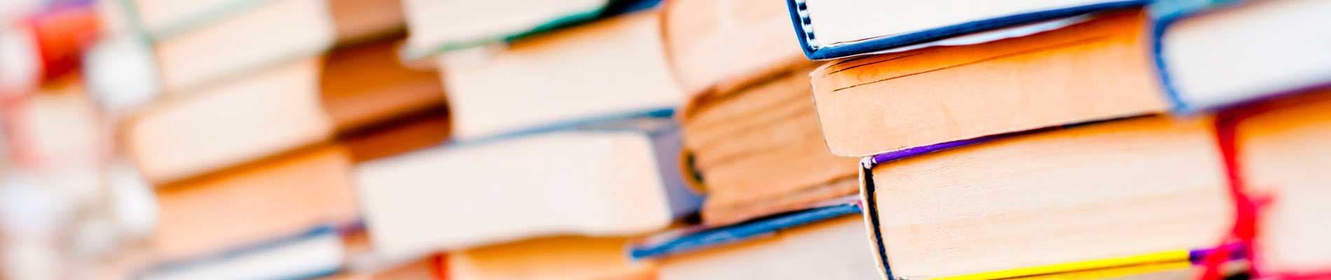Lingüística y literatura