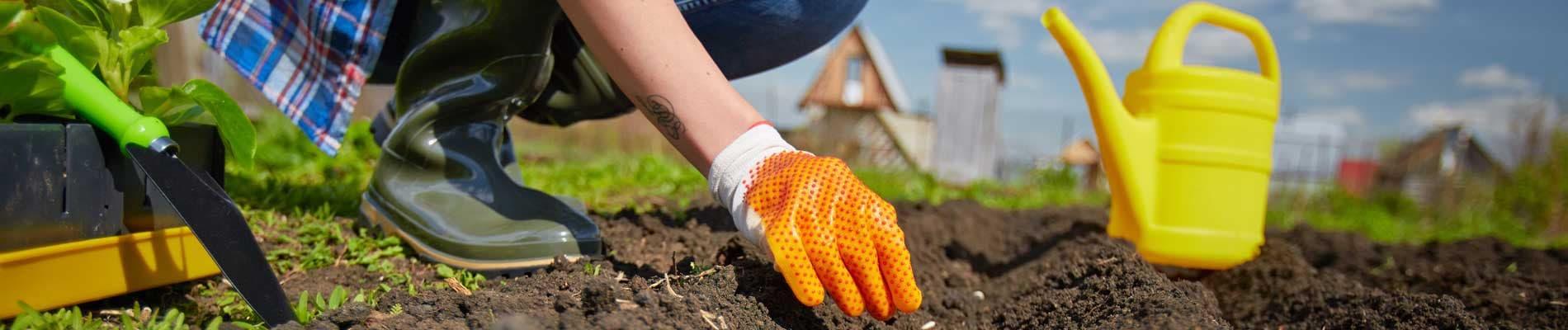 Agricoltura, giardinaggio e mineralogia
