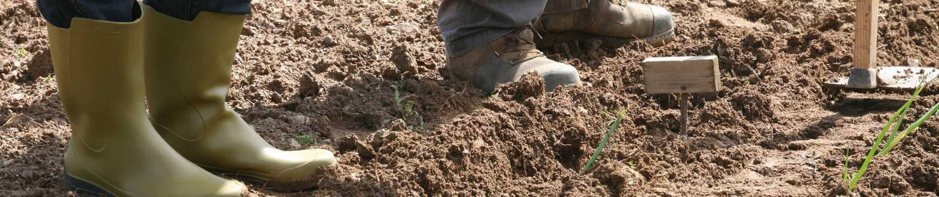 Treballs, explotacions i indústries forestals